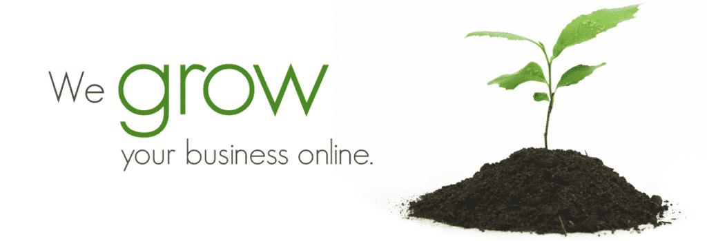 Business Website Branchville