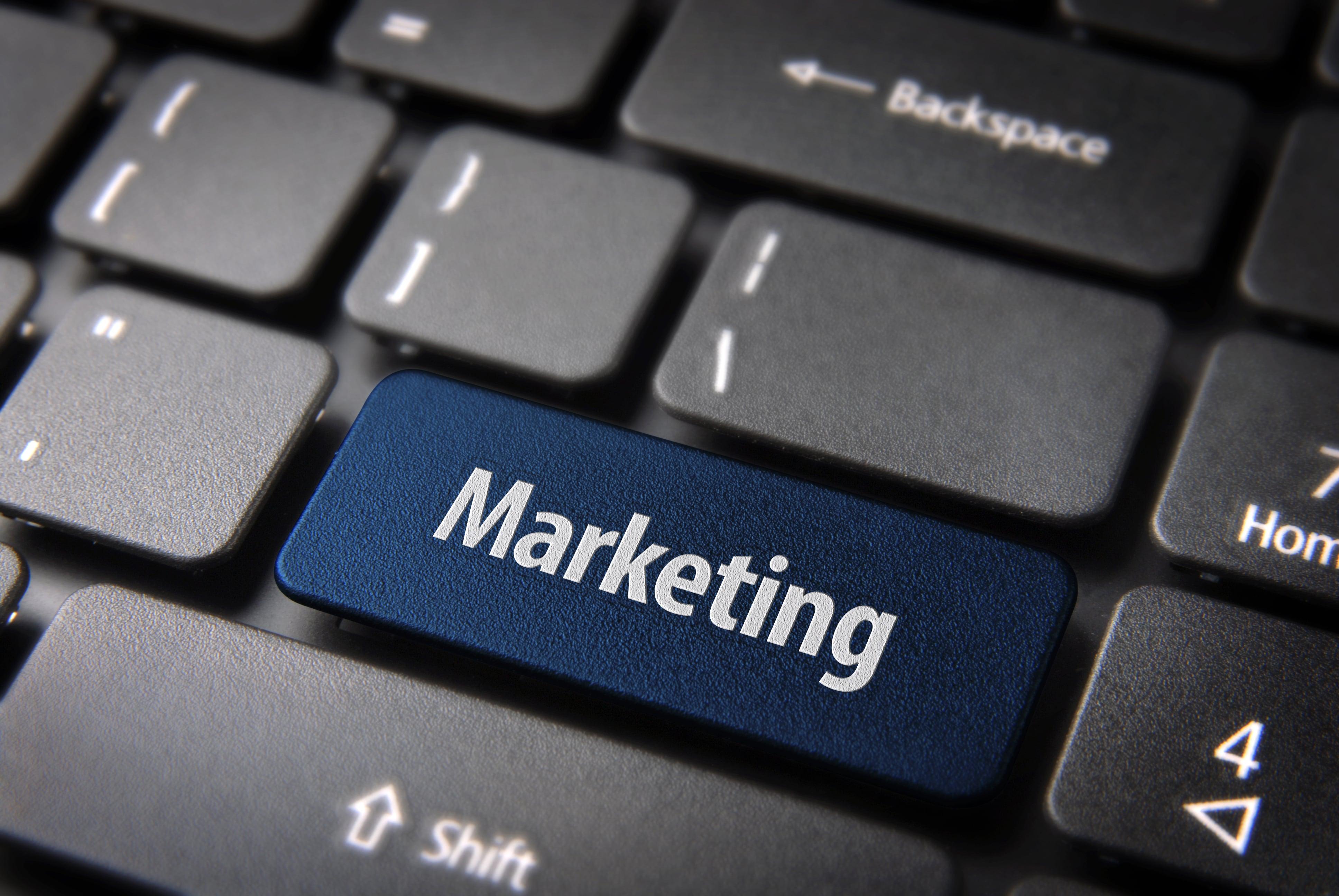 Online Marketing Barnegat Light
