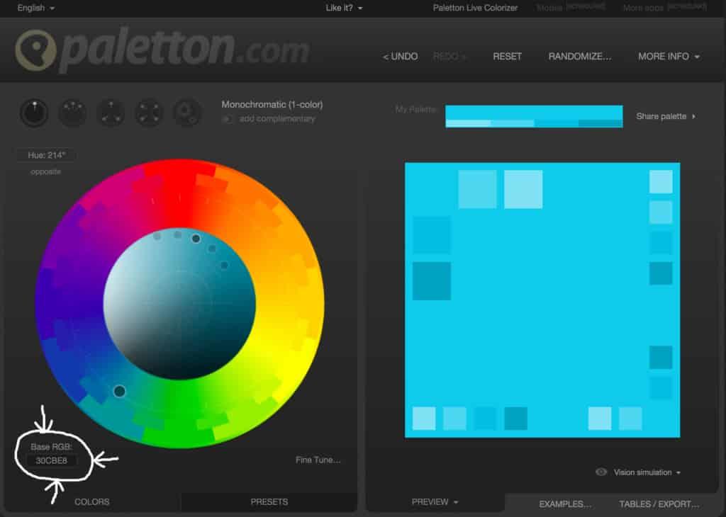 Web Design Belvidere